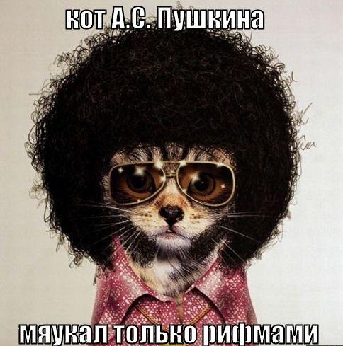 pushkin cat